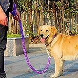 Topshow Nylon-Hundegeschirr mit Leine, 120cm für kleine und mittelgroße Hunde, GrößenS - XL, 10Farben, Gewicht von 4 kg - 60kg