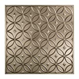 Fasade Easy Installation Rings Brushed Nickel Lay In Ceiling Tile / Ceiling Panel (2' x 2' Tile)