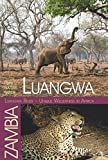Luangwa - Unique Wilderness in Africa: HUPE Nature-Guide Luangwa Valley / Zambia