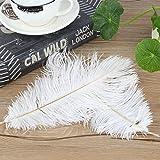 Dailyinshop 50 Teile/Satz 25-30 cm Lange straußenfedern DIY Hochzeit Dekorative Federn (Farbe: Weiß)