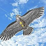 Befied 173x79cm Riesige Adler Flug-Drachen Eagle Drachen Drachenflieger inkl. Drachenschnur für Kinder, Erwachsene und Familien