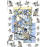 Papel de arroz decoupage: Pájaros, Carteros - cm.32x45