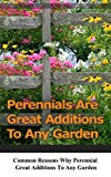 Perennials Are Great Additions to Any Garden: Common Reasons Why Perennial Great Additions to Any Garden
