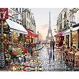 OWIKAR, Öl-Gemälde Paintworks Malen nach Zahlen-Set, Paris, Eiffelturm, Mädchen mit Geschenk-Hochzeit-Geburtstag Geschenk für Mädchen und Jungen, eifelturm-design, 40*50cm