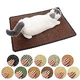 Leisuretime Katzenkratzmatte, Haustier Katze Kratzkissen Mat Scratcher Spielzeug Schutz Play Pad von Farbe zufällig (50*80cm)