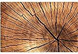 matches21 Holzoptik Tischsets Platzsets MOTIV Holzscheibe/Baumscheibe / Baumstamm 6er Set Kunststoff je 43,5x28,5 cm abwaschbar