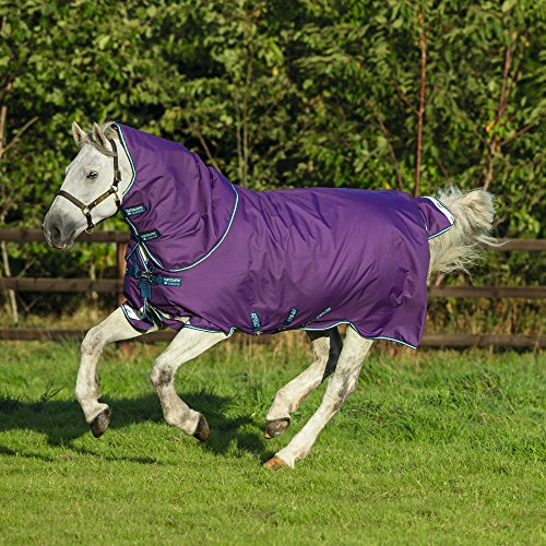 Horseware Amigo Bravo 12 plus medium mit Halsteil Purple 3 Bauchgurte (165)