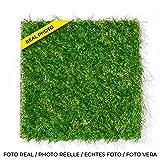 Leoturf LEO30 Premium Hochwertiger Kunstrasen/Höhe 30mm/ 100% europäische Konfektion/Kombination von 4 bunten Garnen TENCATE GRASS/Rolle von 1M X 5M