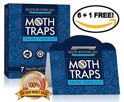 Moth Busters Dispensa del lepidottero trappole Sicuro Non tossico Professionale feromone Non...