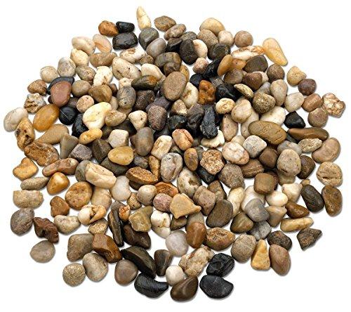 Katzco 2Pfund Großer Deko River Rock Steine-Natur Poliert Mixed Farbe Steine-Verwendung in Glaswaren, Wie Vasen, Aquarien und Terrarien Um die Aussehen