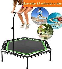 Qulista Sport - 40inch Profi Extrem Fitness und Aerobic Trampolin Gartentrampolin Indoor/Outdoor mit einstellbarem Haltegriff, belastbar bis 150kg, Faltbar