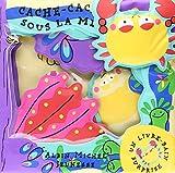 Cache-cache sous la mer - Un livre-bain surprise