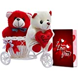 ME & YOU Cycle Teddy and Love Card, Romantic Gift for Anniversary, Birthday, Valentine's Day