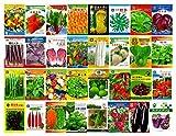 Samen-Paket Nicht Pflanzen: 31# Lange eeds 800Rare Gemüse 4-Season Garten Original Buntes Re Paket umfasst ursprüngliche Eigenschaften Gemüsesamen