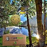 """4 x 50 Stck (200 Stck) sicher verpackt durch 4 Einzelkartons Meisenknödel Marke """"Vogelfood"""" Vogelfutter Wildvogelfutter Ganzjahresfutter Fettfutter mit Netz Versand mit DHL"""