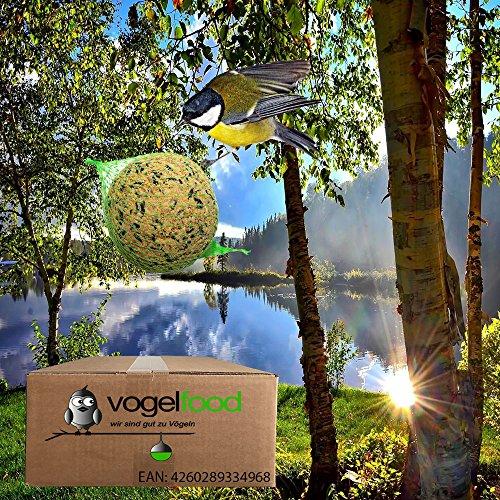 Vogelfood Palline di grasso con rete, 200 pezzi, mangime per uccelli selvatici per tutto l'anno