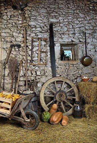 Kate Herbst Foto Hintergründe grau Stein Wand Vintage Cottage Ernte Hintergründe für Kinder Thanksgiving Fotoshootings
