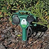 Garten Steckdose FSD1 mit Fernbedienung Erdpieß Steckdose 2-fach Außenbereich outdoor Funksteckdose Aussensteckdose funk wassergeschützt IP44 Vergleich