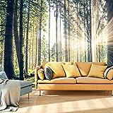 murando® Fototapete Wald 3D 350x245 cm - Vlies Tapete - Moderne Wanddeko - Design Tapete - Wandtapete - Wand Dekoration - Wald Landschaft Natur Sonne Grün Bäume Sonnenuntergang c-B-0098-a-c