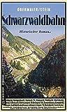 Schwarzwaldbahn: Ein historischer Kriminalroman um Robert Gerwig (Historische Romane im GMEINER-Verlag)
