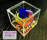 Cubo Rose Stabilizzate Multicolor 8x8x8 -Passionefiori.it il Cubo con rosa è una vera e propria Rosa che dura 5 anni - fiore conosciuto anche come Rosa eterna Rossa, non ha bisogno di acqua ne luce.