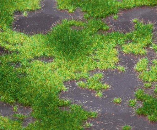 Preisvergleich Produktbild Faller 180468 - Premium Landschafts-Segment, Hochmoor