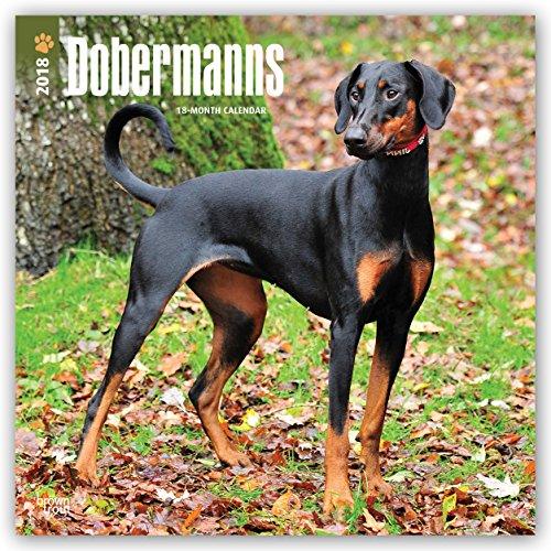 Descargar Libro Dobermans International - Dobermänner 2018 - 18-Monatskalender: Original BrownTrout-Kalender -  mit freier DogDays-App de Browntrout Publishers