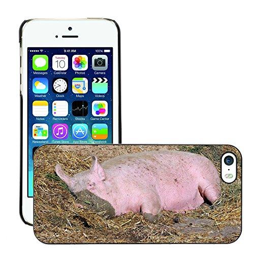 Just Phone Cover Bild Hart Handy Schwarz Schutz Case Cover Schale Etui // M00138240 Schwein Sau Säugetier Hausschwein // Apple iPhone 5 5S 5G