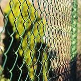 Clôture grillage casa pura® vert | tailles au choix | mailles 60x60mm | avec couche en PVC | résistant aux intempéries, 0,8x15m