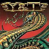 Songtexte von Y & T - Mean Streak