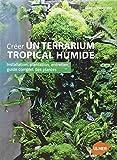 Créer un terrarium tropical humide : Installation, plantation, entretien, guide complet des plantes