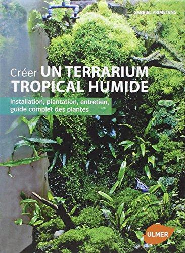 crer-un-terrarium-tropical-humide-installation-plantation-entretien-guide-complet-des-plantes