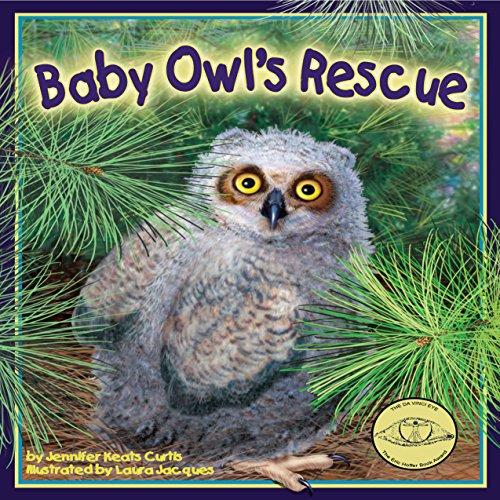 Baby Owl's Rescue  Audiolibri
