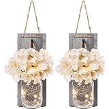 qerich Lot de 2 guirlandes Mason Jar - Hortensias en Soie et Guirlande LED - Design pour la décoration intérieure, décoration