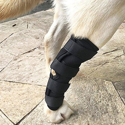 PanDaDa Haustier Hund Hintern Bein Knöchel Hosenträger Hinterbein Klammer mit Loch Wunden Recovery Protector, Verhindert Verletzungen und Verstauchungen, Hund Hinterbein Hock