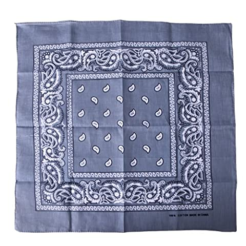 HDE 100% Cotton Double Sided Paisley Print Bandana Handkerchief Headwrap Doo Rag