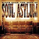 Songtexte von Soul Asylum - Black Gold: The Best of Soul Asylum