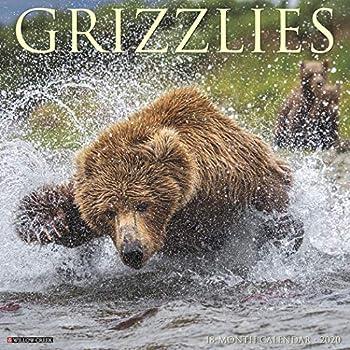 Grizzlies 2020 Calendar