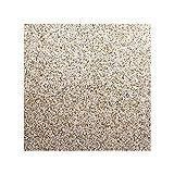 Kaminplatte, Stein Granit Bodenplatte Ofenplatte, Große Arbeitsplatte Küchenplatte 80cm x 80 cm, Tischplatte aus poliertem Granit, Unikat Handarbeit, 40 KG (Beige)
