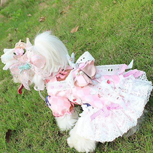 Hund Abendkleid, Puppy Dog Princess Kleider White Lace Rock Design Rabbit Dekoration mit Spitze Stirnband Geeignet für Hochzeitsfoto Festival (White Rabbit Dog Kostüm)