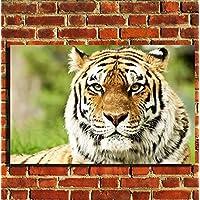 Tigre animale Wildlife Stampa Su Tela da parete con cornice portafoto poster S, M, L, 20
