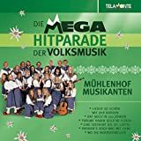 Mega Hitparade der Volksmusik-Stimmung-Party-Spa