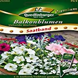 SB Balkonblumen stehende Misch QLB Premium Saatgut Blumen einjährig