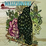 Songtexte von The Wallflowers - Rebel, Sweetheart