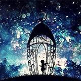 Riou DIY 5D Diamant Painting Voll,Stickerei Malerei Crystal Strass Stickerei Bilder Kunst Handwerk für Home Wand Decor Gemälde Kreuzstich Nachthimmel Mädchen Bild Muster (Mehrfarbig, 30 * 30cm)