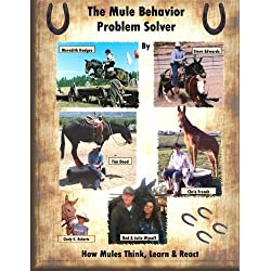 The Mule Behavior Problem Solver: How Mules Think, Learn and React