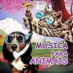 Música para Animais – Caes e Gatos, Música para Relaxar, Sons da Natureza, Música Instrumental, Música para Redução do Estresse