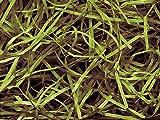 Green Tea Veryfine Cut? Paper Shre10 Lb. Box ~ Spring-Fill? Shred 1 Packs