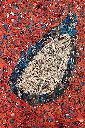 Spider-Man 'Auge Montage' Maxi Poster,61 x 91.5 cm -