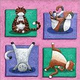Poster 70 x 70 cm: Yoga für Katzen von Peter Adderley/MGL Licensing - Hochwertiger Kunstdruck, Neues Kunstposter